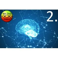 Bio Info Source Pszichológia előadás 2.