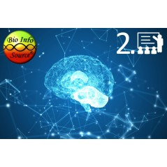 Bio Info Source Pszichológia 2. előadás